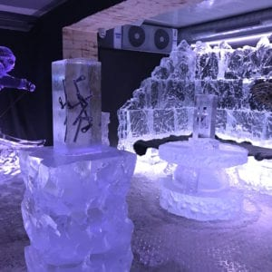 wolf17 1 300x300 - The Lone Wolf Ice Bar, Newcastle