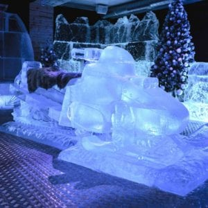 wolf19 1 300x300 - The Lone Wolf Ice Bar, Newcastle