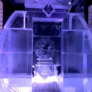 wolf20 300x300 - The Lone Wolf Ice Bar, Newcastle