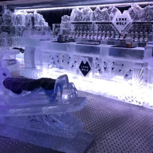 wolf21 300x300 - The Lone Wolf Ice Bar, Newcastle