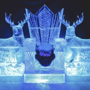 wolf23 300x300 - The Lone Wolf Ice Bar, Newcastle