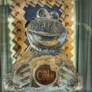 Cookie Monster. Instagram @cjjourneys 300x300 - Legendary Return to the York Ice Trail