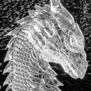 Dragon head 1 300x300 - Legendary Return to the York Ice Trail
