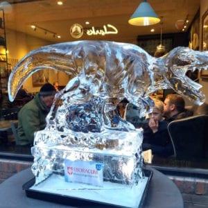 Trex 1 300x300 - Legendary Return to the York Ice Trail