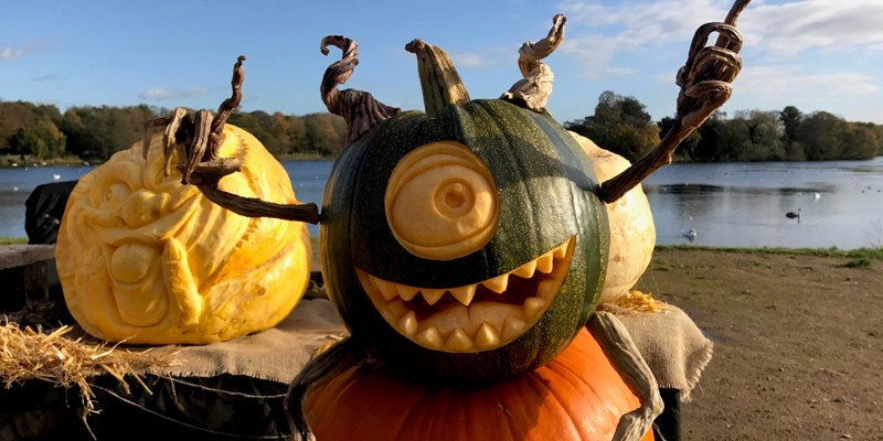 pumpkin carving - Winter 2019-2020 Live Carvings & Ice Trails